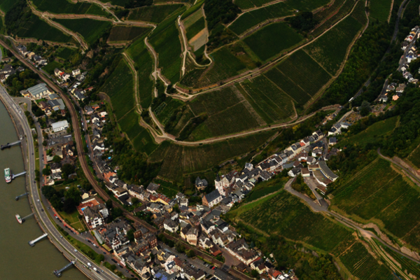 A Bird's-Eye View of the Rheingau - The Hillside Vineyards of Kiedrich